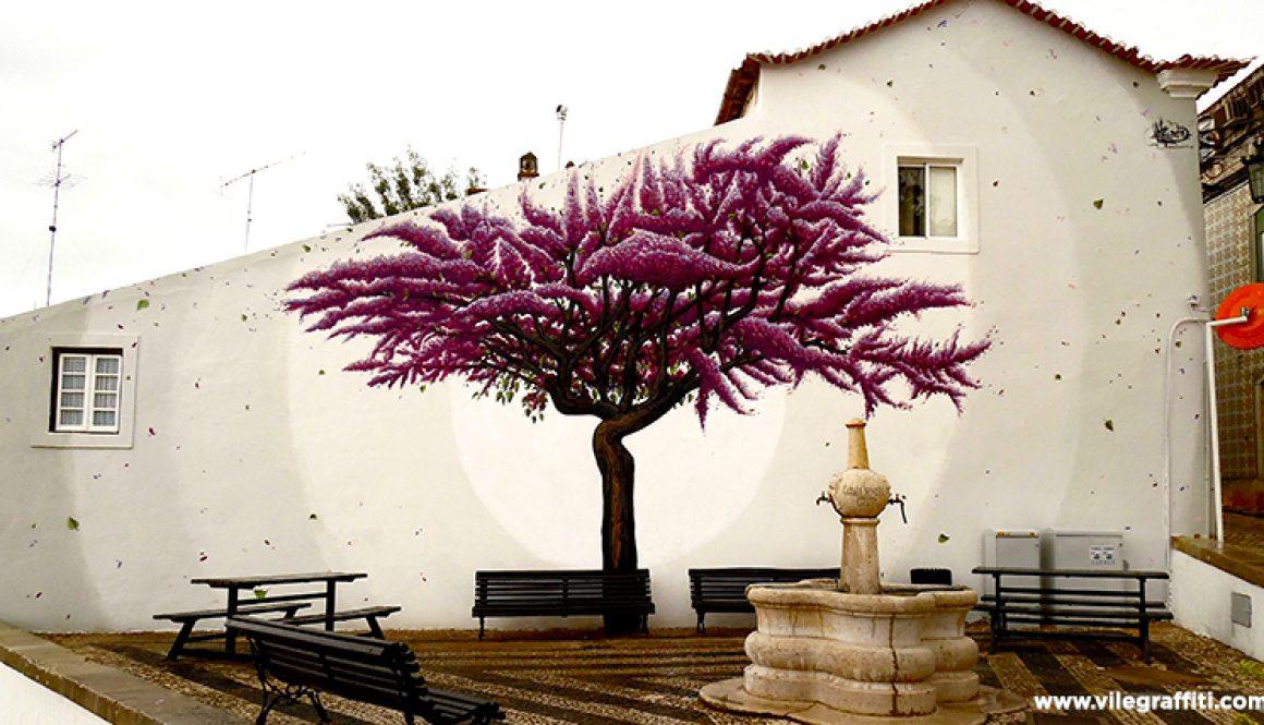 Olaia tree Alenquer